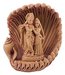 Radha Krishna inside  Conch