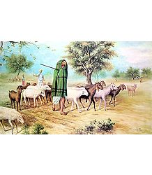 The Old Shepherd