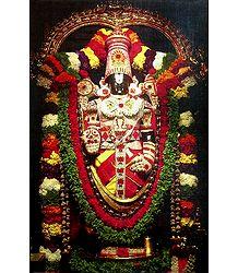 Lord Balaji Poster