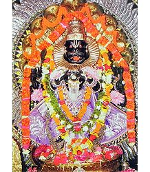 Buy Narasimha Avatar Photographic Print