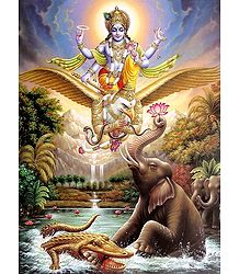Vishnu with Garuda - Book